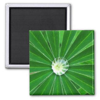 Green Energy  Magnet