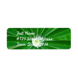 Green Energy Mailing Label Return Address Label