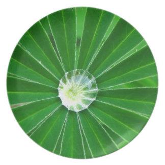 Green Energy Plate