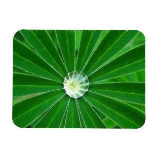 Green Energy Premium Magnet