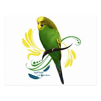 Green English Budgie Postcards