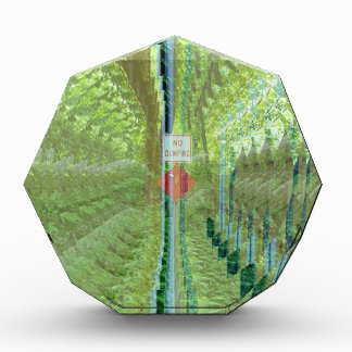 Green Environmental No Dumping Sign At End Of Tunn Awards