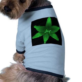 Green Envy Lily Dog Shirt