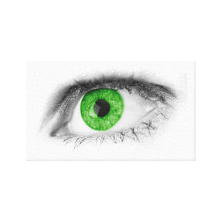 Green Eye Gallery Wrap Canvas