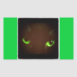 Green Eye Lucy Rectangular Sticker