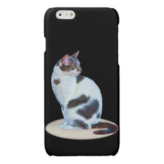 Green-eyed Black and White Cat Glossy iPhone 6 Case