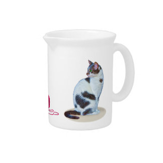 Green-eyed Black and White Cat Pitcher