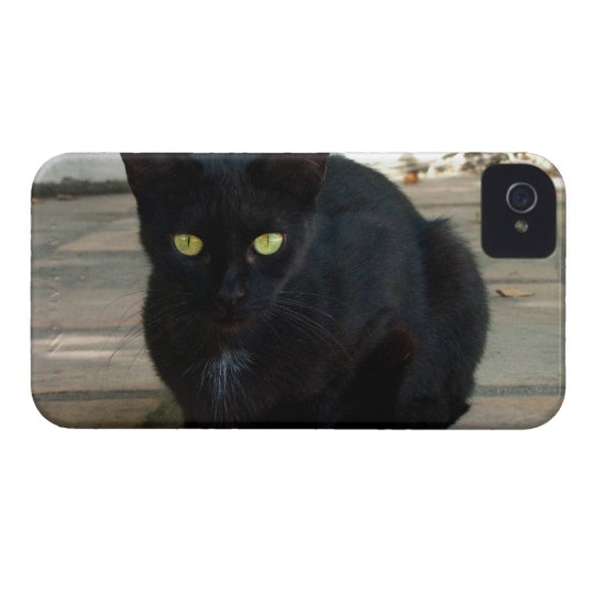 Green Eyed Black Cat; No Greeting iPhone 4 Case-Mate Case