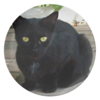 Green Eyed Black Cat; No Greeting Plate