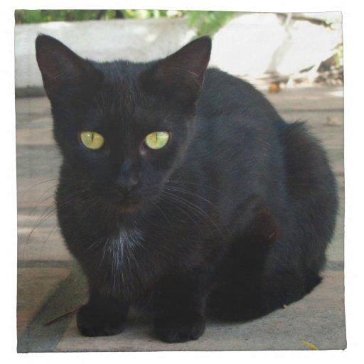 Green Eyed Black Cat; No Greeting Printed Napkins