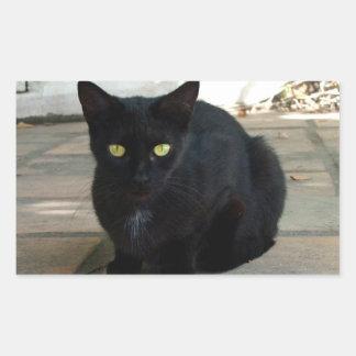 Green Eyed Black Cat; No Greeting Rectangular Sticker