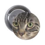 Green Eyed Cat 2 Inch Round Button