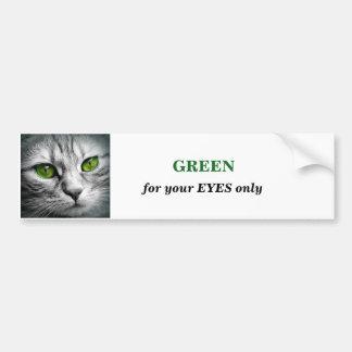 green eyed cat bumper sticker