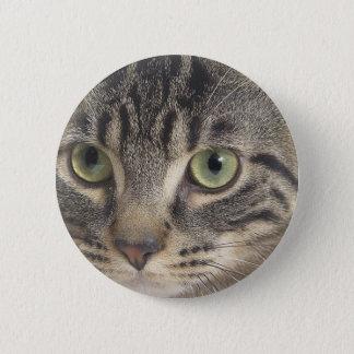 Green Eyed Cat Button