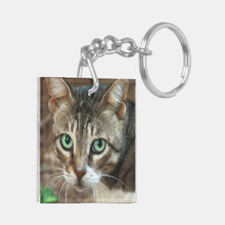 Green Eyed Cat Double-Sided Square Acrylic Keychain