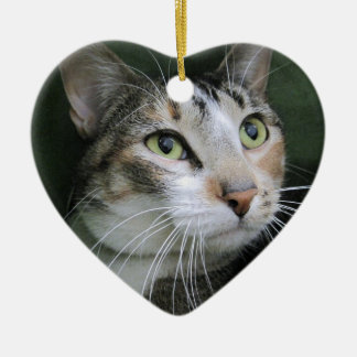 Green Eyed Cat Christmas Tree Ornament