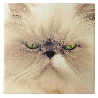 Green eyed cat portrait ceramic tile