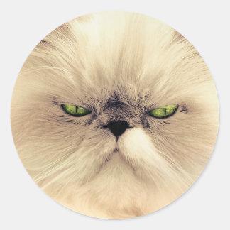 Green eyed cat portrait classic round sticker