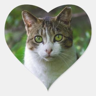 Green-eyed cat portrait heart sticker