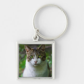 Green-eyed cat portrait Silver-Colored square keychain