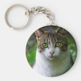 Green-eyed cat portrait basic round button keychain