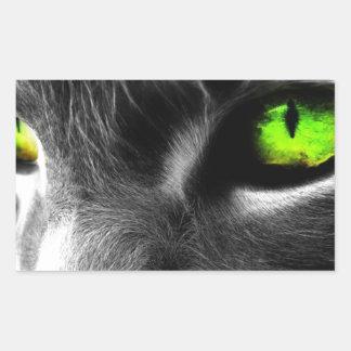 Green eyed cat rectangular sticker
