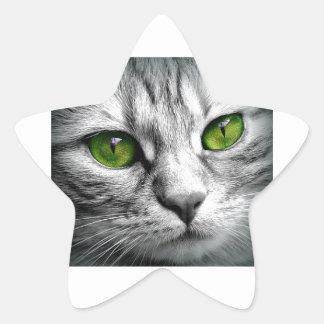 green eyed cat star sticker