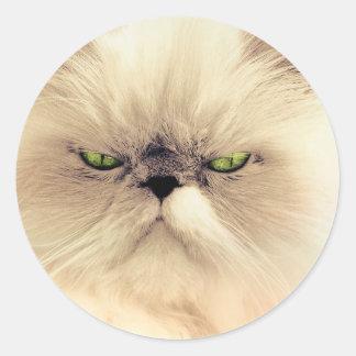 Green-Eyed Cat Sticker