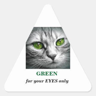 green eyed cat triangle sticker