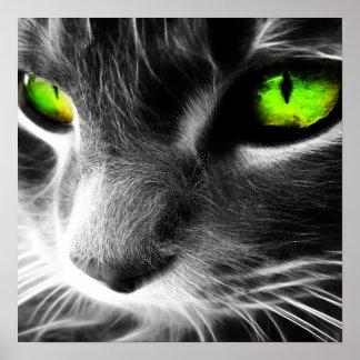 Green Eyed Cat Up Close Print