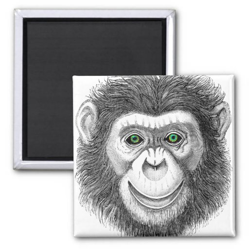 Green-Eyed Chimp 2 Inch Square Magnet