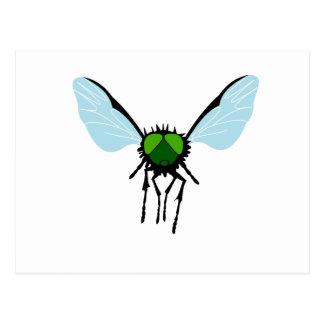 Green-eyed Fly Postcard