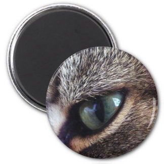 Green-Eyed Gray Tabby Cat Eye Close-Up 2 Inch Round Magnet