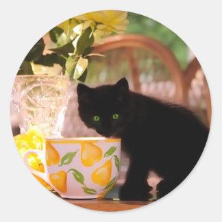Green Eyed Kitten Stilllife Classic Round Sticker