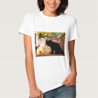 Green Eyed Kitten Stilllife T Shirt