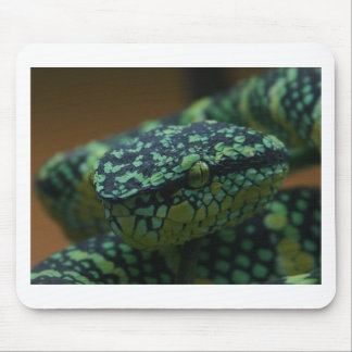 Green-Eyed Snake Mouse Pad
