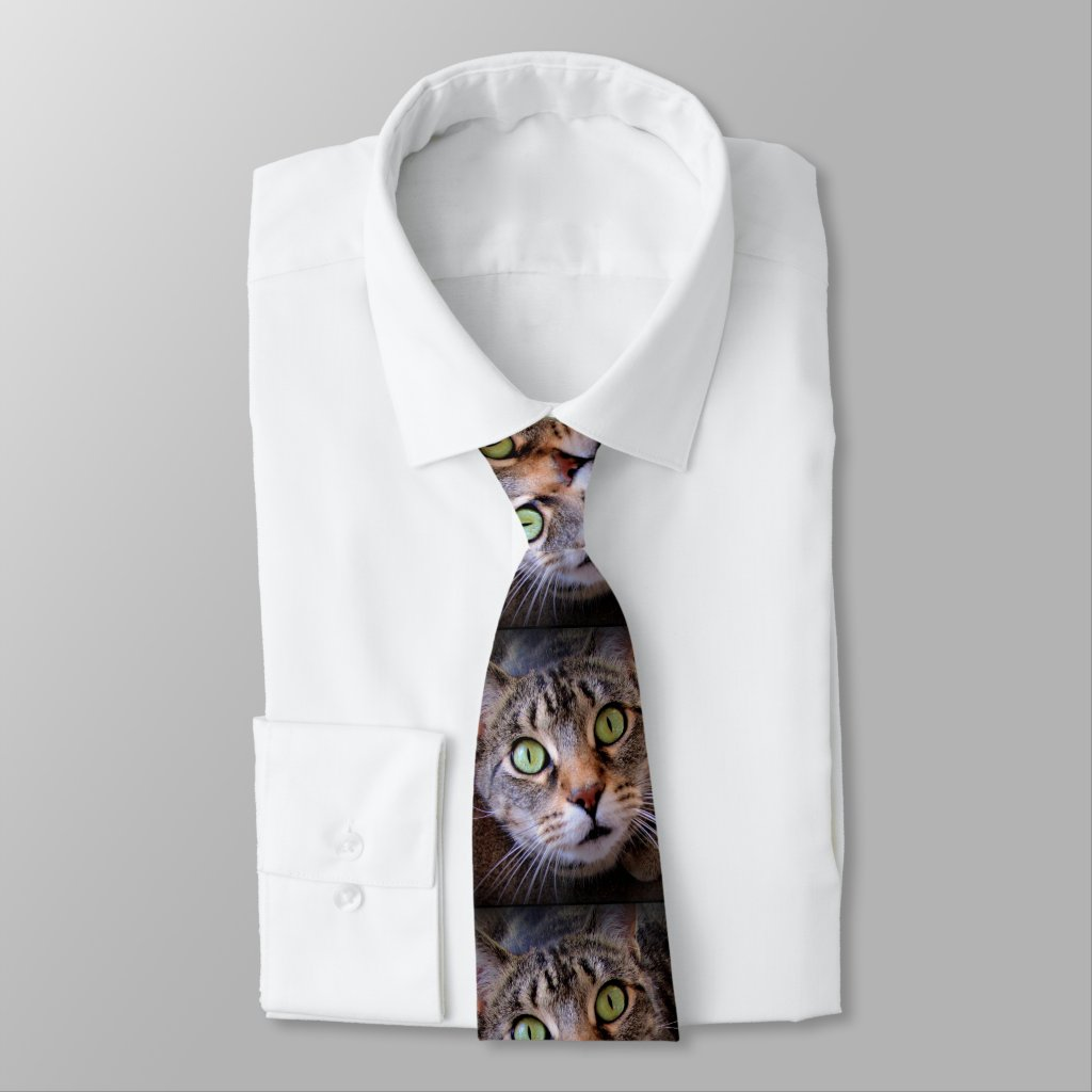 Green Eyed Tabby Cat Menswear Tie