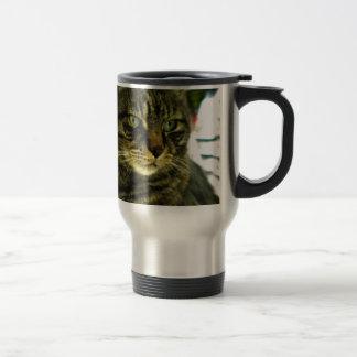 Green Eyed Tabby Face Travel Mug