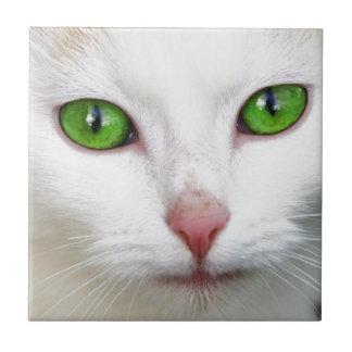 Green Eyed White Cat Ceramic Tile