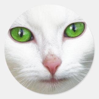 Green Eyed White Cat Classic Round Sticker
