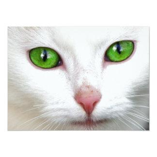 Green Eyed White Cat Invitation Card