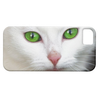 Green Eyed White Cat iPhone 5/5S Case