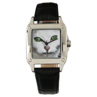green eyed white cat watch
