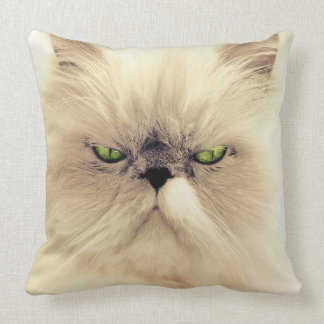 Green Eyed White Persian Cat Pillow