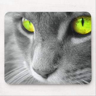 green eyes cat mousepad