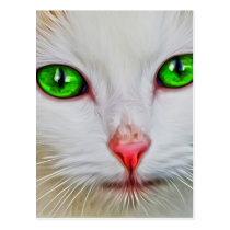 Green Eyes Cat Postcard