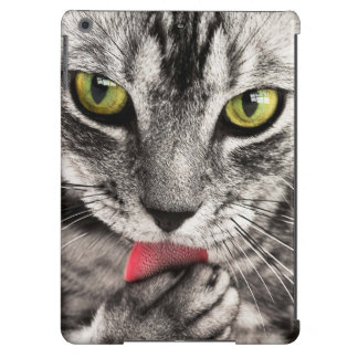 Green eyes tabby cat close-up ipad air case