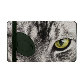 Green eyes tabby cat close-up ipad case