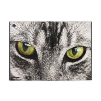 Green eyes tabby cat close-up ipad mini case