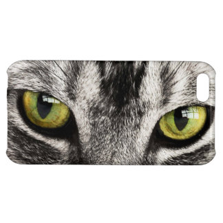 Green eyes tabby cat close-up iphone 5c case